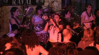 balkan paradise orchestra   hora andalusia