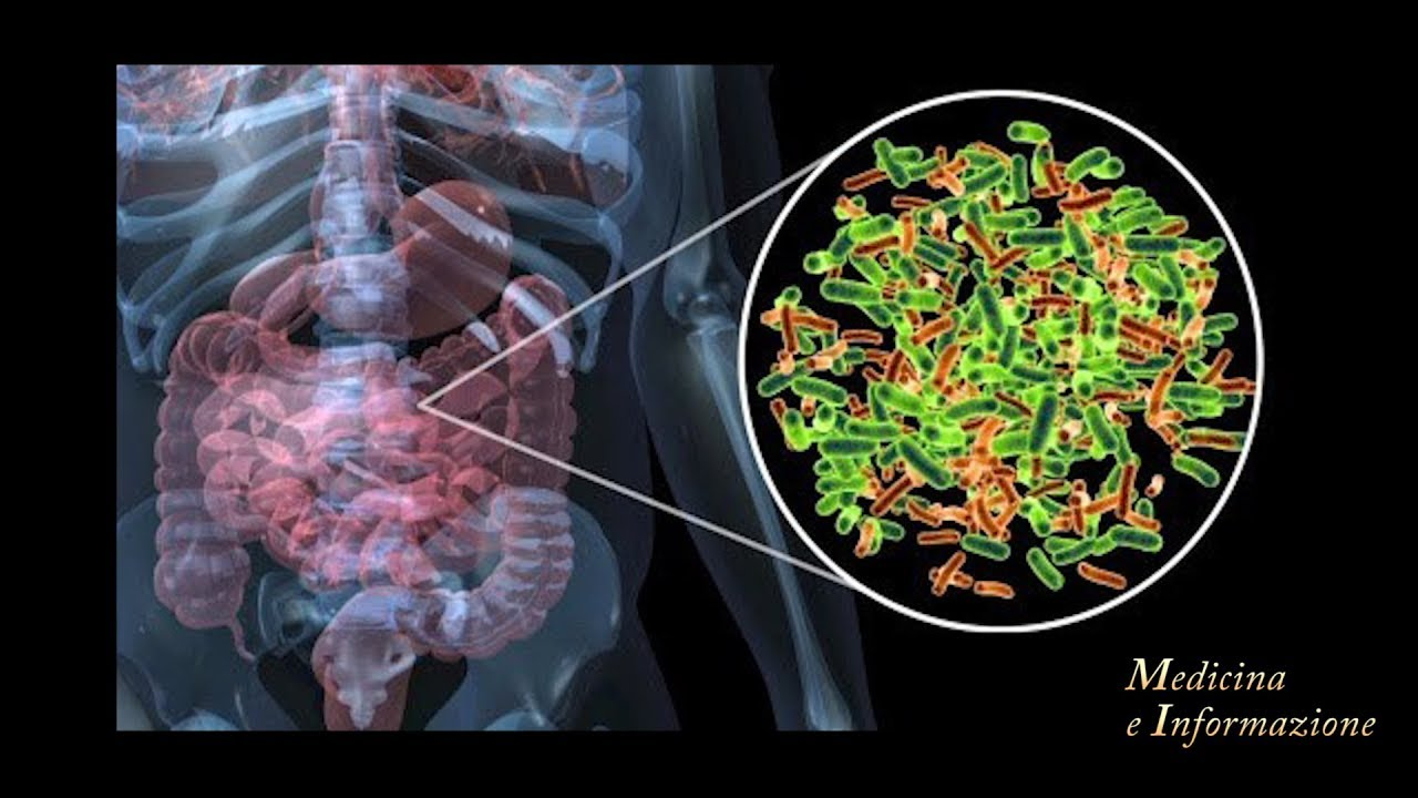 Microbiota e Cancro: che legame c'é?