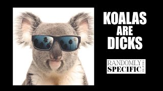 Koalas are Dicks