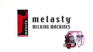Меня зовут Melasty
