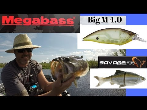 Trying Out A Couple New Big Baits. Megabass Big M 4.0