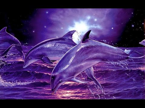 Lemurian Dolphin Lightbody Meditation