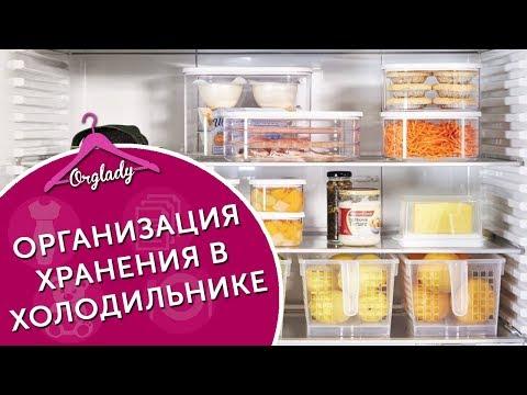 Хранение в холодильнике. Как продлить срок хранения продуктов (прямой эфир)