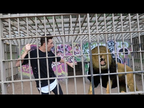 EXPLORING ABANDONED ZOO GONE WRONG (LION FOUND!)