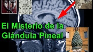 Glándula Pineal, La Puerta de la Matrix