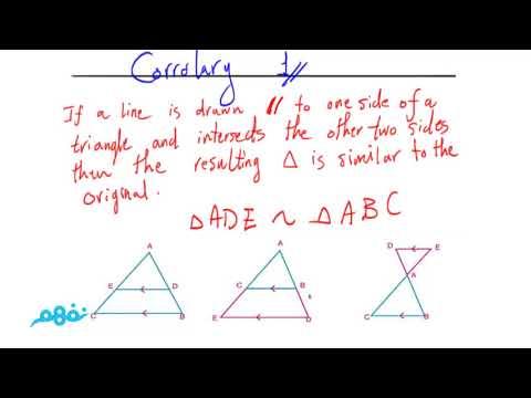 Similarity of Triangles - نفهم - الرياضيات لغات - الصف الأول الثاننوي