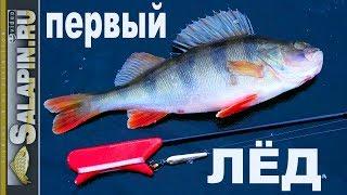 Зимняя рыбалка: первый лед 2017-2018, окунь на блесну [salapinru]
