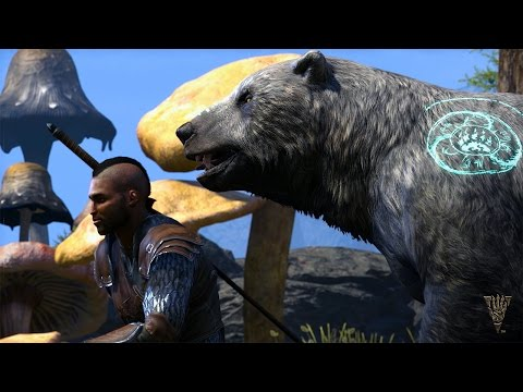 The Elder Scrolls Online: Morrowind – Warden Gameplay Trailer