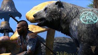 The Elder Scrolls Online: Morrowind – Warden Gameplay Trailer