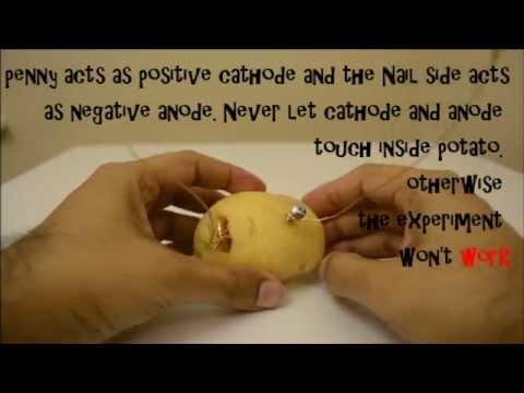 Potato light bulb experiment for kids youtube.