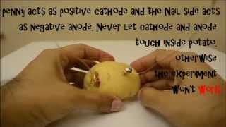 DİY Patates Pil çocuklar için Deney LED Işık! ADIM AÇIKLAMA KOLAY ADIMDA!