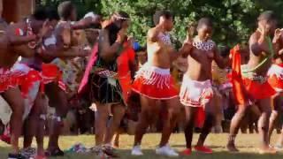Reed Dance Virgins - Amatshitshi pt1
