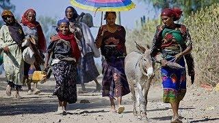Gambar cover Bati – Bezawork Asfaw | Amharic Music | ባቲ – በዛወርቅ አስፋው (አማርኛ ሙዚቃ)