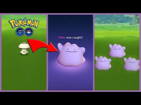 CATCHING DITTO HAS NEVER BEEN EASIER IN POKEMON GO! How To Find Ditto Fast!