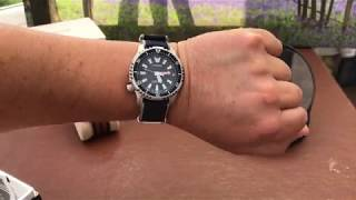 Citizen ProMaster Dive Watch Fugu Limited Edition Automatic
