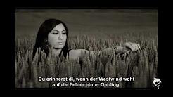 Österreichische und Bayerische Balladen