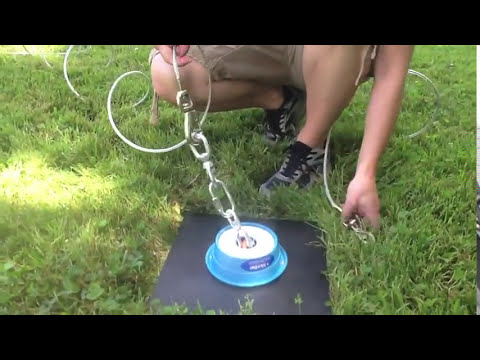 How to Install Two Dog Tie Out - the Double Dog Run System