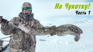 Рыбалка и охота на Чукотке весной. Ловля налима и гольца со льда на блесну