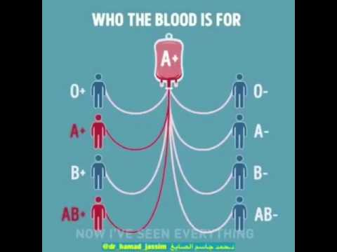 Blood groups donors and receivers youtube