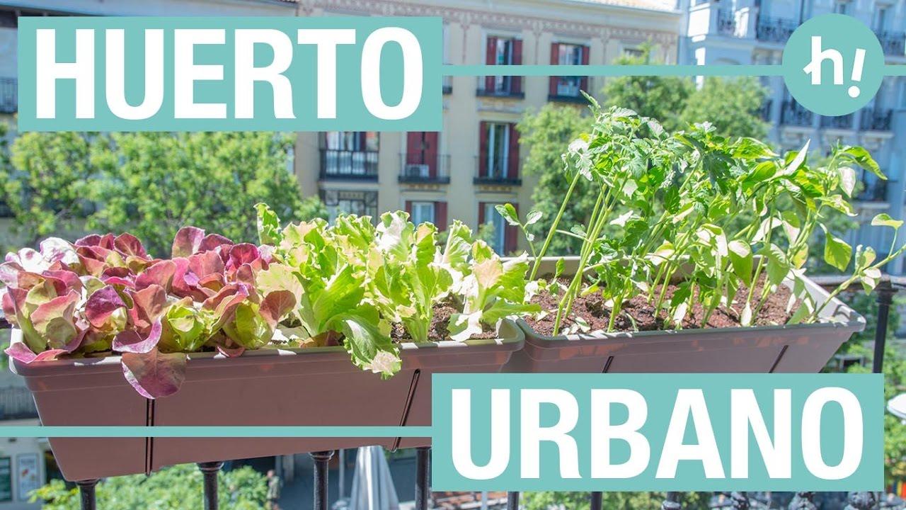Huerto urbano para el balc n handfie diy youtube - Huerto urbano balcon ...
