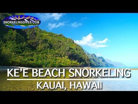 Best Ke'e Beach Snorkeling | Kauai