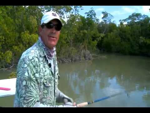 Florida Keys-Sharks, Redfish And Pink Flamingos