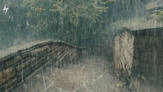 WILD Rain & THUNDER for Sleeping and Relaxing- Helpful sounds for Sleep-Meditation-Study-11Hrs