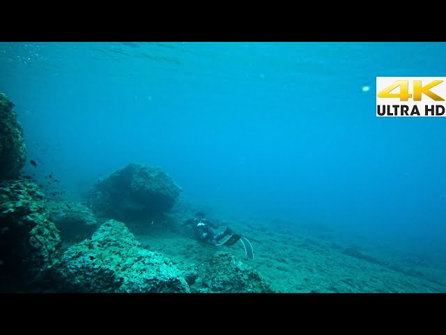 ME N THE SEA🌊Into The Unknown |Spearfishing Life 🇬🇷 [4K]✅