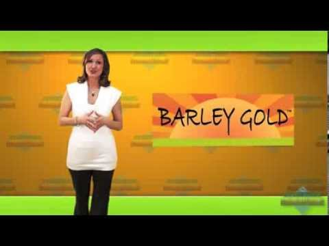 Barley Gold - Health & Wealth with ECOE Super Food! (8:25)