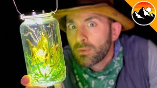 GLOW BUGS! - How to Build a Lightning Bug Lantern!