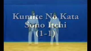 Ashihara Karate Kumite Kata sono Ichi & Bunkai (Fighting Kata 1) -  2015