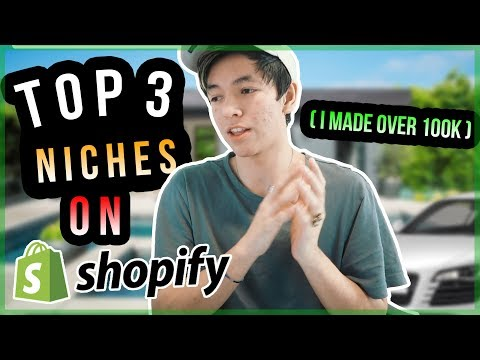 TOP 3 NICHES SHOPIFY DROPSHIPPING 2018 (#1 MADE ME $124,000 *with proof*)
