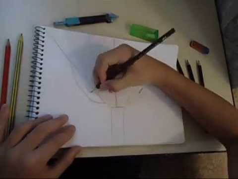 Como Desenhar um Gavião - Desenhos Artísticos