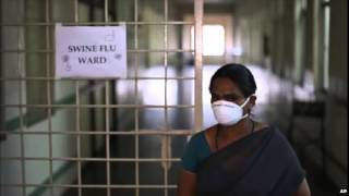 India struggles with deadly swine flu outbreak