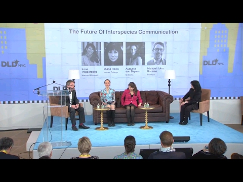 The Future Of Interspecies Communication (A.v.Bayern, I.Pepperberg, D.Reiss, Gorman) | DLD New York