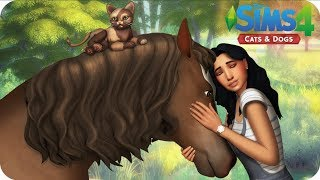 ANIMAL SHELTER | Sims 4 Cats And Dogs Letsplay - EP 1