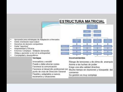 Estructura Matricial Youtube