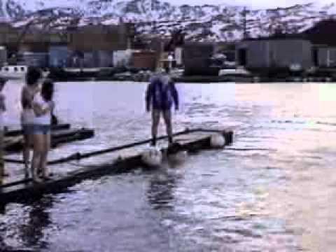 Adak Alaska Polar Bear Plunge