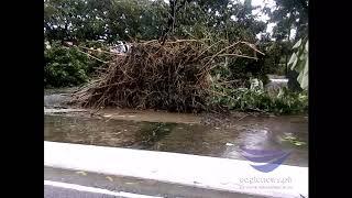 Devastation in Pangasinan after typhoon Ompong onslaught Sept. 15, 2018