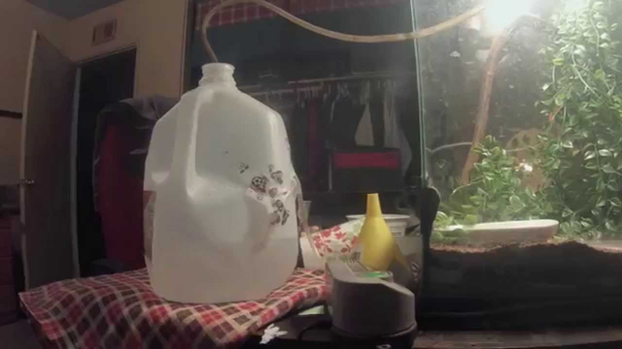 How To Build Your Own Reptile Humidifier Youtube