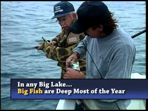 Catch Trophy Trout In Lake Tahoe