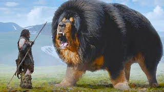 15 Most Ancient Dog Breeds On Earth