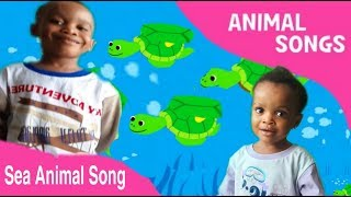 Sea Animal Song| Under The Sea Animal Song | Nursery Rhyme For Kids.