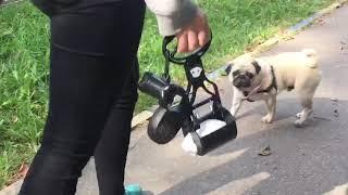Как убирать за собакой на улице? Смотрите видео(, 2018-09-29T06:24:49.000Z)
