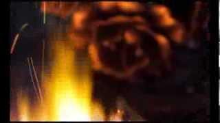 Ковка металла(Горячая ковка металла. На видео отрывок из рабочего процесса студии ковки Alexandr & Sylvesterhttp://alexandr-sylvester.com/video/kovka..., 2014-03-12T13:39:35.000Z)
