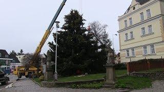 Vánoční strom Světlá n.S. 2018