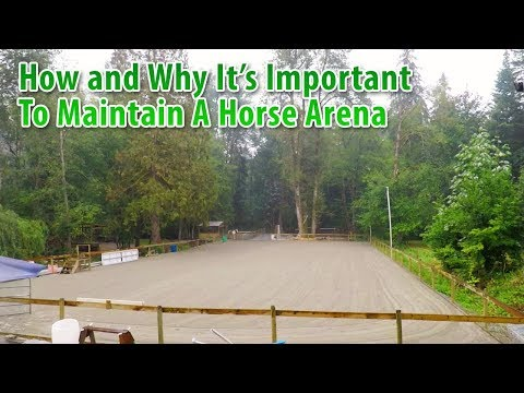 How And Why It's Important To Maintain A Horse Arena