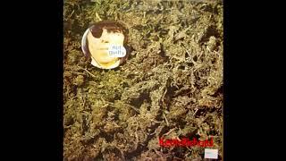 Keith Richards - Gone Again / Sugar babe