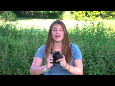 Canon EOS 200D - Hands-On First Look