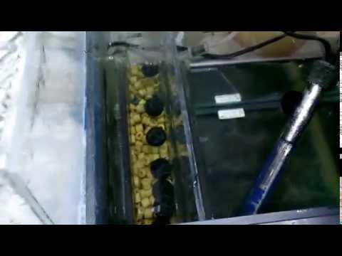DIY wet/dry sump filter